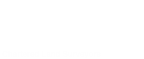 Professional Land Surveys